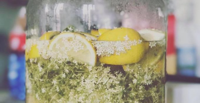 Sciroppo di fiori di sambuco senza acido citrico