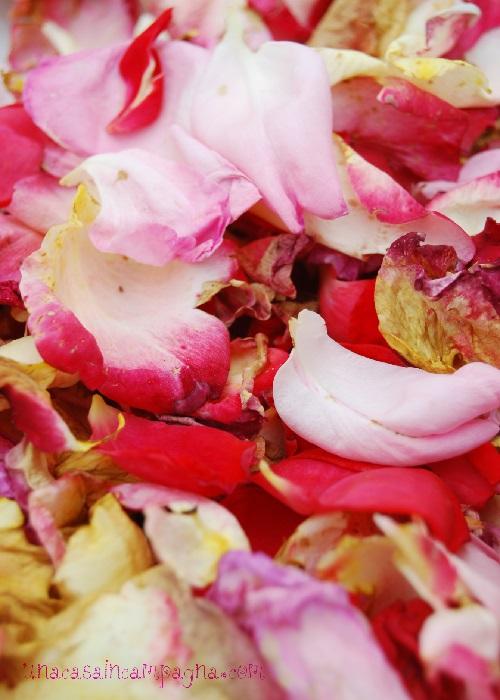 Tè ai petali di rosa