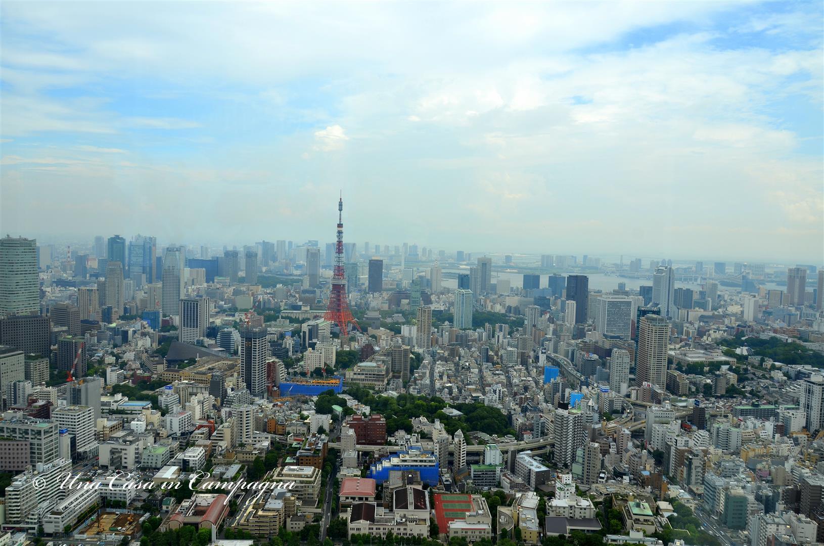 Dieci cose da fare a Tokyo