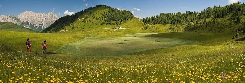 Carnia - alpeggi tra Sauris e la val Pesarina, con sullo sfondo le Dolomiti Pesarine. Foto di M. Verin Archivio di TurismoFVG