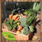 Ho provato Orto in Tasca, l'azienda che a Udine ti porta a casa frutta e verdura a Km0