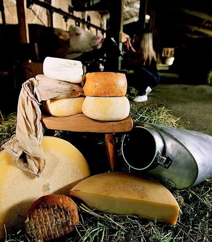 Carnia formaggi Una casa in campagna Blog Alessandra Colaci