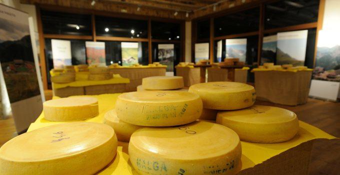 1 dicembre 2019 a Sutrio (UD) – Festa del gusto in Carnia, protagonisti i formaggi e salumi di malga